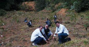 Ceaspue reforesta predio en Huauchinango con 516 encinos
