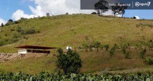 Alertan sobre caminos para maquinaria y caballeriza en cerro Zapotecas
