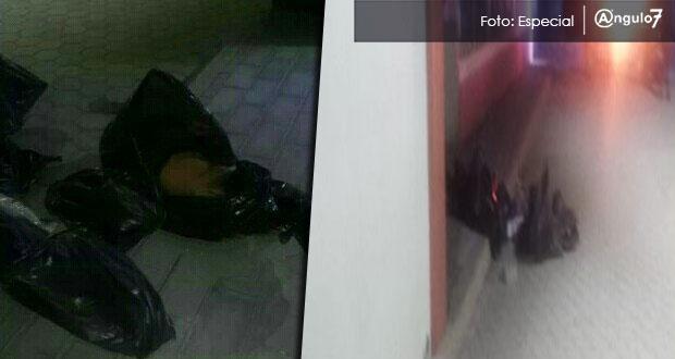 En Reyes de Juárez, encuentran dos cuerpos descuartizados con narcomensaje
