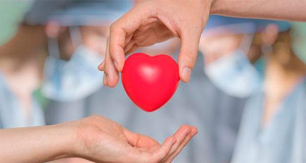 Necesario combatir mitos de donación de órganos en México: experta