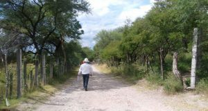 Amplían red eléctrica en calle de segunda sección de Tehuitzingo