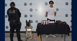 Ssptm detiene a uno por poseer 700 gramos de marihuana en CAPU