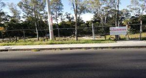 Violan sellos de clausura en vivero Santa Cruz; Srdsot denuncia penalmente