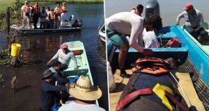 Liberan a dos manatíes adultos en Tabasco