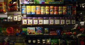 SCJN declara constitucional aplicar IVA a alimentos para mascotas