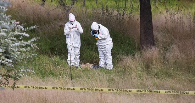 Siguen hallando cadáveres, ahora uno en inmediaciones del Cuauhtémoc