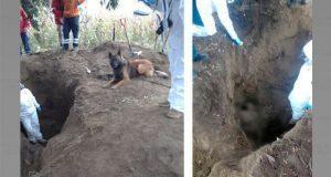 Hallan cuerpos de 8 secuestrados por exdirector de seguridad en Serdán