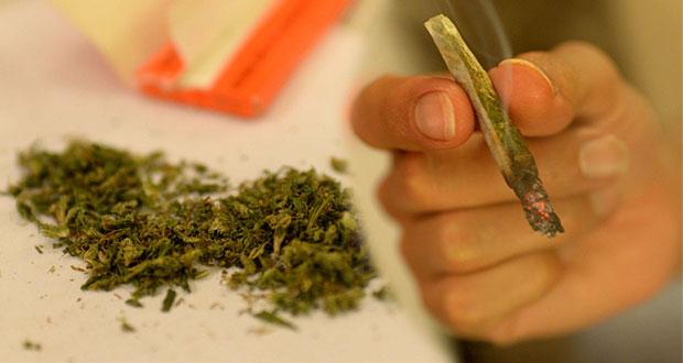 Estas son las normas de la iniciativa para regular la mariguana