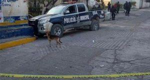 Asesinan a director de Seguridad Pública en Zitlala, Guerrero