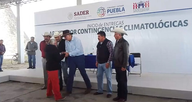 Entregan apoyo a campesinos por daños en 478 hectáreas