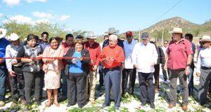 En Tecomatlán, inauguran pavimentación de carretera Yetla-Olomatlán