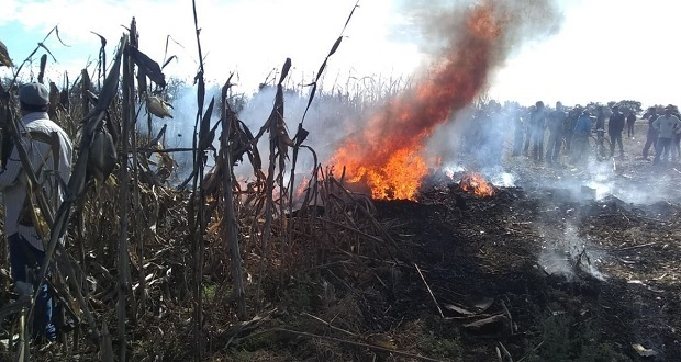 Se desploma avioneta en Coronango; reportan dos muertos