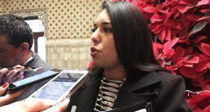 Diputada deslinda a Karina Pérez de cárteles y condena amenazas