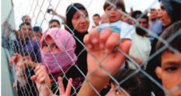 Europa no enfrenta crisis humanitaria, sino de voluntad política: ONG