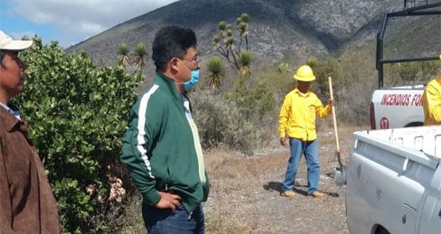 Controlan incendio en reserva Tehuacán-Cuicatlán; afectó 3 hectáreas