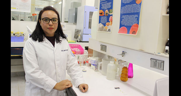 En BUAP, detectan bacterias en purificadoras de agua de Puebla
