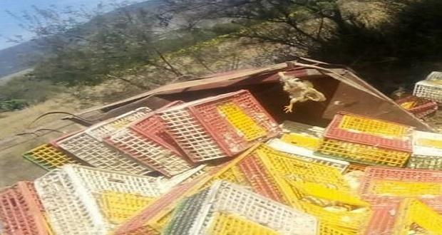 En intento de asalto, vuelca con todo y pollos en la Puebla-Tehuacán
