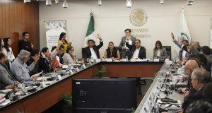 Pese a oposición, avanza en comisiones dictamen de Guardia Nacional