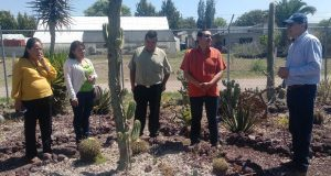 En Ahuatempan, campesinos reciben asesoría para producir cactáceas