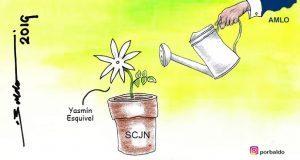Caricatura: Ahora, AMLO cuidará de su jazmín