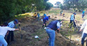 Ceaspue reforesta predio en colonia Moratilla, cerca del Atoyac