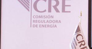 En nuevas ternas para CRE, repetirán candidatos con más votos, confirman