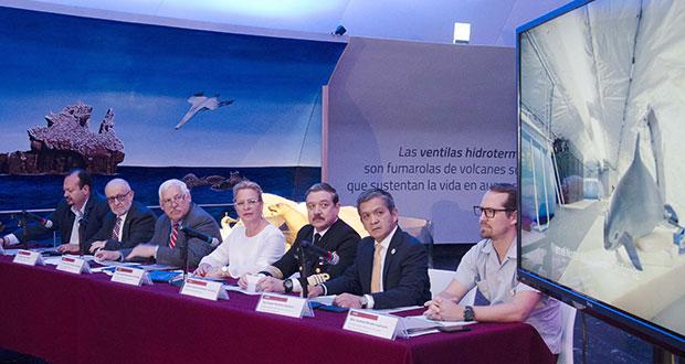 Gobierno de AMLO anuncia medidas para proteger a la vaquita marina