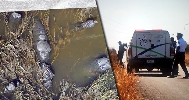 En Jalisco, hallan varios cuerpos embolsados en canal de desagüe