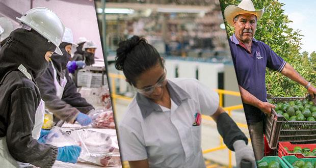 En enero, actividad económica nacional crece 0.2%: Inegi