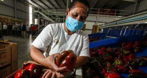 Gobierno ve potencial para clusterizar agroalimentos y textil en Puebla