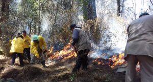 De 6 incendios en Puebla, 2 fueron sofocados y 4 controlados: PC