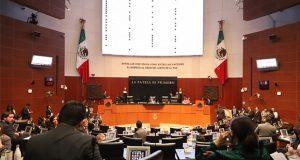Designan a Josefina Román comisionada del INAI