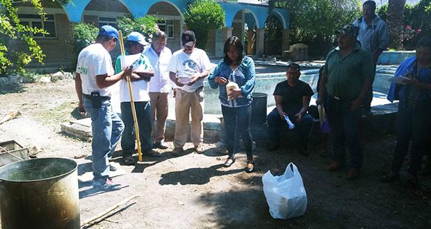 Atexcal capacita a agricultores para producir insecticida orgánico