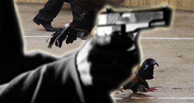 Balacera en pelea de gallos deja un muerto en la Guadalupe Hidalgo