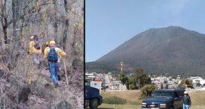 Brigadas trabajan para liquidar incendio forestal en cerro El Pinal