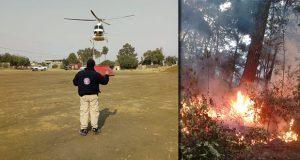 Controlan incendios forestales en Tetela y Saltillo La Fragua: PC