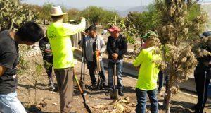 En Tehuacán, vecinos y asociación reforestan colonia popular