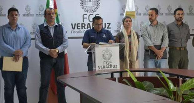 Hallan en Veracruz cementerio clandestino con al menos 36 fosas