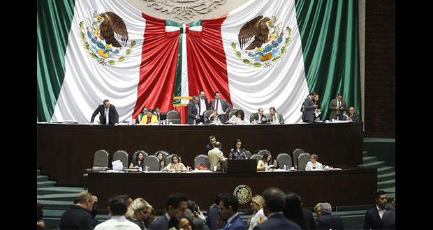 En San Lázaro, van contra propuesta para sacrificar perros en Puebla