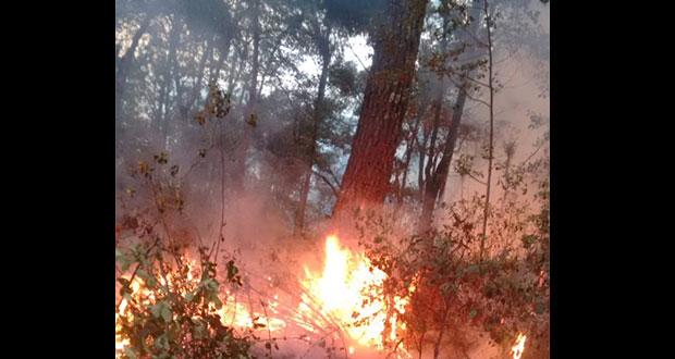 Incendios en Tlatlauquitepec y Ahuazotepec, descontrolados, acusan