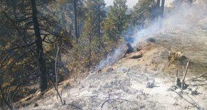 Hay 16 incendios forestales activos y 11 liquidados en Puebla: SGG
