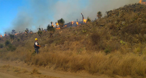 PC estatal combate incendios forestales en diez municipios poblanos