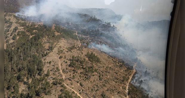 Protección Civil pide prevenir incendios forestales