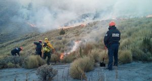 Controlan incendio forestal en La Malinche; fue causado por fogata