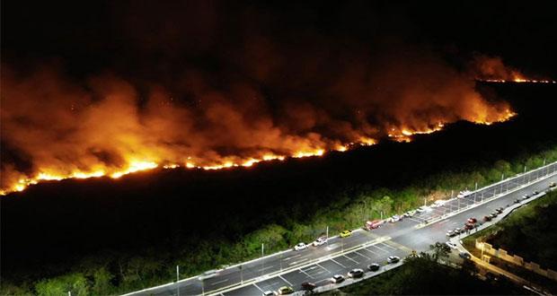 Incendio consume 200 hectáreas de manglar en Los Petenes, Campeche