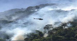 Gobierno actuará penalmente contra quienes provoquen incendios forestales