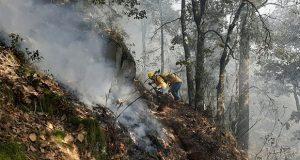 Puebla, con 7 incendios forestales liquidados y 13 activos en 12 municipios