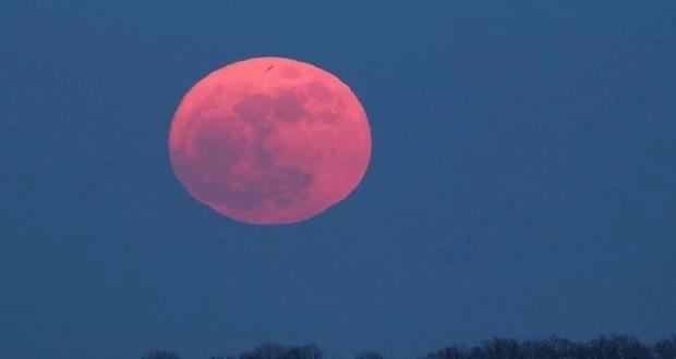 Disfruta este viernes de la Luna Rosa; se verá más grande