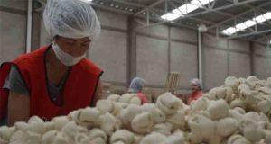 Cámara de Diputados avala reforma ley laboral para ajustarla a T-MEC