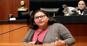 """Con """"libro bomba"""", atacan en Senado a morenista Citlalli Hernández"""